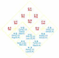 Ромбовидная форма таблицы соответствия